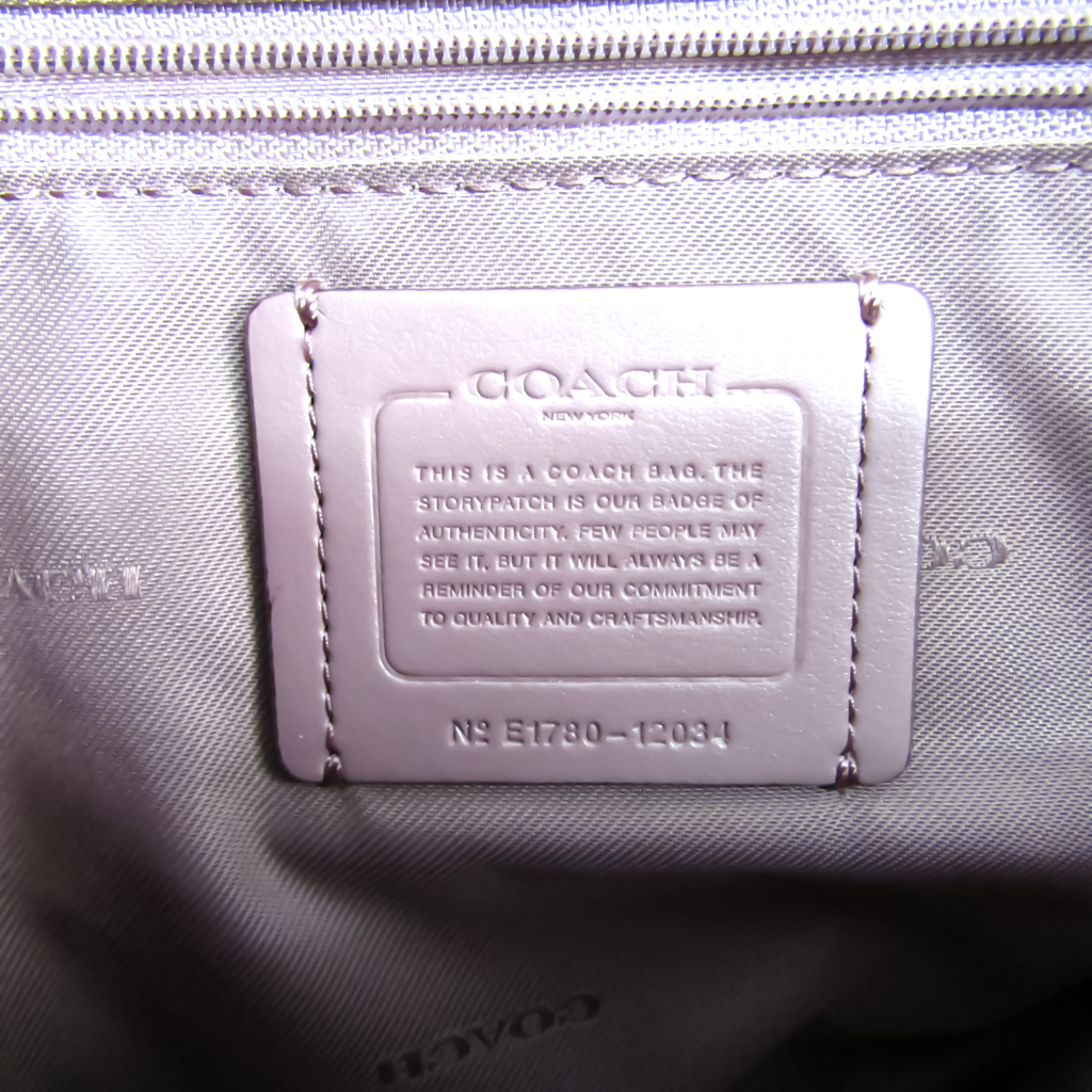 Coach Edie 31 With Tea Rose Touring 12034 Women's Leather Shoulder Bag Dusty Pink