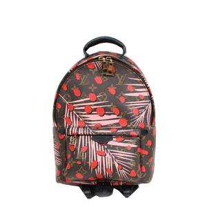 Louis Vuitton LV Monogram Jungle Dot Palm Springs Backpack PM LOUIS VUITTON