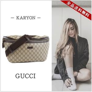 Gucci Gucci West Pouch Ladies Men's Brown Side Waist Bag Body 211110