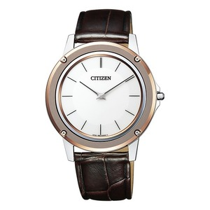 Citizen Eco Drive Stainless Steel Casual Watch AR5026-05A