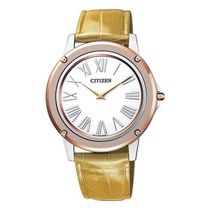 Citizen Eco Drive Stainless Steel Casual Watch EG9004-18A