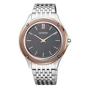 Citizen Eco Drive Stainless Steel Men's Watch