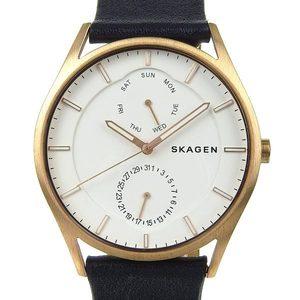 Real SKAGEN Skagen Mens Quartz Wrist Watch White Dial 111704